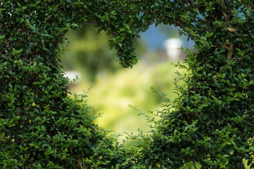 heart, herzchen, love